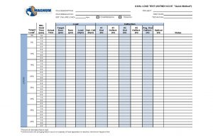 Axial Load Test Data Sheet